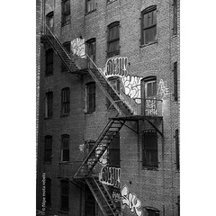 Stairs & brick & windows & grafitty (filipe mota rebelo | 400.000 views! thank you) Tags: windows bw newyork brick stairs america square cityscape squareformat highline grafitty fmr iphoneography instagramapp motarebelo