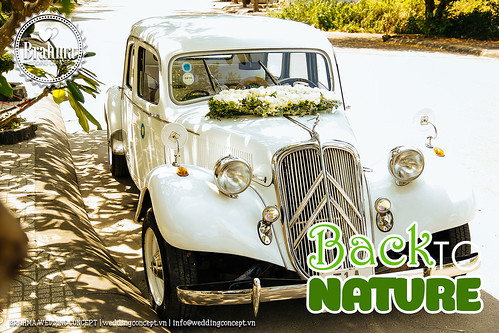 Braham-Wedding-Concept-Portfolio-Back-To-Nature-1920x1280-11
