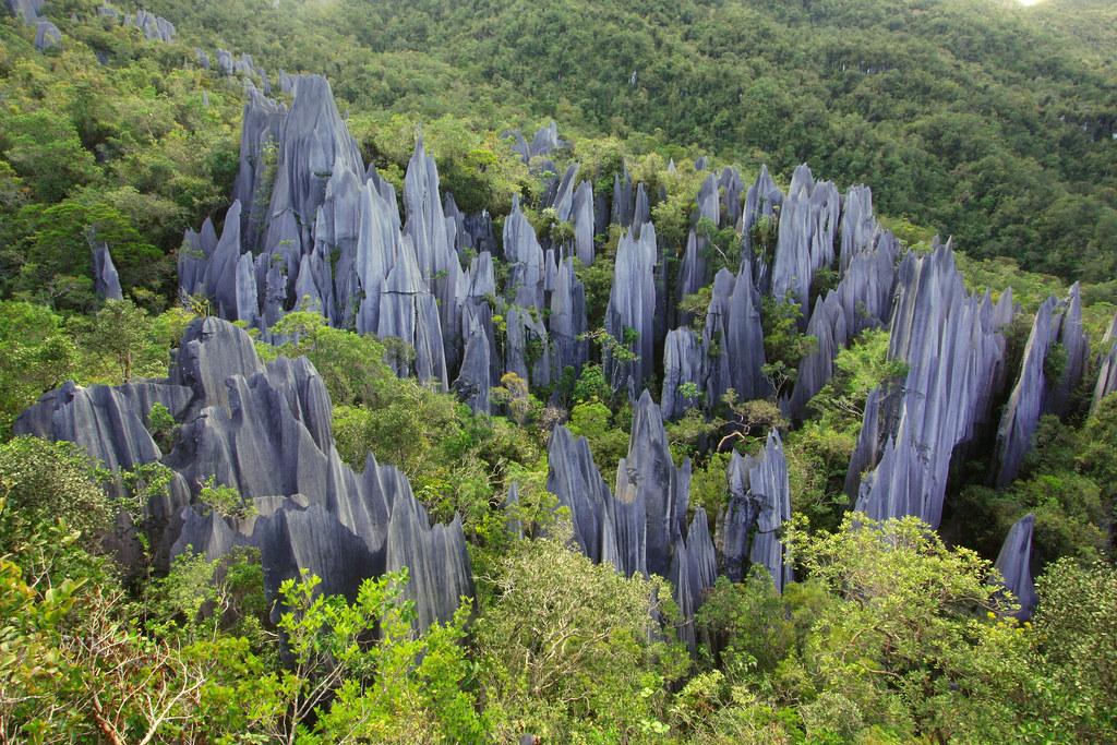 Kết quả hình ảnh cho vườn quốc gia Gunung Mulu