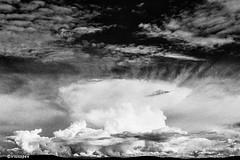 Wetter war gestern... # Image012_N12 # Nikon F3 Nikkor 35-70 Agfa APX100 Negativ - Aug 2016 (irisisopen f/8light) Tags: nikon f3 nikkor 3570 agfa apx100 negativ schwarzweiss bw black white analog irisisopen