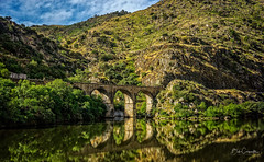 Rugged Reflection (Bob C Images) Tags: water river reflections mountains rugged steep tones sonya7 portugal douro sky bridge