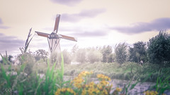 The windmill of my mind (babs van beieren) Tags: windmill soft misty damme