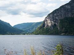 Hardanger : la route des flords ! (dd.hz34) Tags: norway hardanger nasjonal turistveger road fjord cliff nature