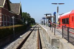 IMG_4017-www.PjotrWiese.nl