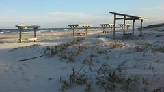 Malaquite Beach on Padre Island (amir85) Tags: texas padreislandnationalseashore malaquitebeach gulfofmexico picnictables
