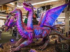Dragons (renato_de_camargo@yahoo.com.br) Tags: drago