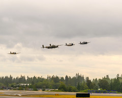 Five Radials, Four WWII Warbirds, Low Approaching (AvgeekJoe) Tags: a6m3 a6m3reisen a6m3zero a6m322 b25 b25mitchell b25j b25jmitchell buster d5300 dslr f6f f6fhellcat f6f5 f6f5hellcat fhc fhcnorthamericanb25jmitchell fhcp47tallahasseelassie fhczero flyingheritagecollection grummanf6f grummanf6f5 grummanf6f5hellcat grummanhellcat hellcat kpae mitsubishia6m3 mitsubishia6m322 mitsubishia6m322reisen mitsubishia6m322zero mitsubishireisen mitsubishizero nikon nikond5300 northamericanb25 northamericanb25mitchell northamericanb25j northamericanb25jmitchell other p47 p47thunderbolt p47d p47dthunderbolt painefield places reisen republicp47thunderbolt republicp47dthunderbolt tallahasseelassie warbirds zero aircraft airplane aviation plane propblur radial radialengine soundofround warbird warplane everett washington unitedstates us