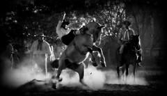 Lucas Cabeda (Eduardo Amorim) Tags: gacho gachos gaucho gauchos cavalos caballos horses chevaux cavalli pferde caballo horse cheval cavallo pferd crioulo criollo crioulos criollos cavalocrioulo cavaloscrioulos caballocriollo caballoscriollos pampa campanha fronteira uruguaiana riograndedosul brsil brasil sudamrica sdamerika suramrica amricadosul southamerica amriquedusud americameridionale amricadelsur americadelsud cavalo         hst hest hevonen  brazil eduardoamorim jineteada gineteada
