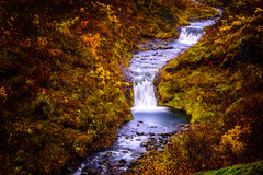Flow (mihail.suontaus) Tags: iceland lightroom nikon autumn beautiful blue colors flow green landscape longexposure nationalpark nature river rock vatnajkull water yellow