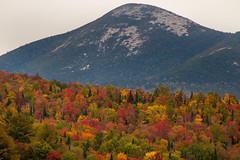 North Percy (blackseal35) Tags: 2016 24105l canon canonti1 cooscounty errol fall nh newhampshire northwoods stark whitemountains c color colorful colors leafpeeping leaves mountains river roadtrip stream view water woods