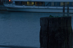 16_10_02_Fhrhafen-14.jpg (werwen01) Tags: fhrhafen jahreszeit friedrichshafen orte bodensee herbst ereignisse morgenstunde