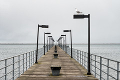 'Please Be Seated' (Canadapt) Tags: pier gull seagull lamp light standard railing boardwalk bench lake huron perspective vanishingpoint horizon usa canadapt