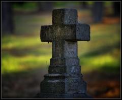 Calvary Cemetery (Ernie Misner) Tags: ortoneffect calvarycemetery cemetery tacomawa erniemisner nikon nik capturenx2 cnx2 f8andaddtheblur