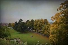 Autumn View (Jocelyn777) Tags: autumn parks textured