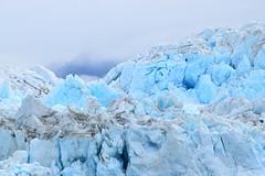 Hubbard Glacier, Alaska (jessica.rohrbacher) Tags: glacier hubbard blue alaska ice mountains usa glacial