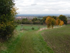 Polab (bbara155) Tags: autumn landscape trees
