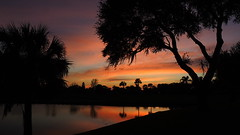 Mid December Sunset (Jim Mullhaupt) Tags: pink blue trees sunset red wallpaper sky orange lake color fall water weather silhouette yellow clouds reflections palms landscape evening pond nikon scenery flickr sundown florida dusk tropical coolpix bradenton p510 mullhaupt cloudsstormssunsetssunrises jimmullhaupt