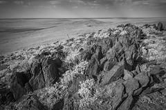 boolcoomatta sept 2014 - 9291272 - wiperaminga (liam.jon_d) Tags: landscape desert australian conservation australia outback sa southaustralia bha semiarid southaustralian billdoyle bushheritageaustralia westernloop conservationreserve abhf boolcoomatta bushheritage outbacklandscape australianbushheritagefund boolcoomattareserve wiperaminga wiperamingahill eremophilaloop