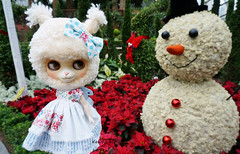 That snowman looks rather dubious.......