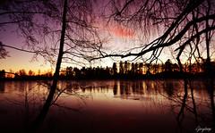 Sunset (iJoydeep) Tags: sunset nature nikon sandefjord bugrden bugrdsparken d7000