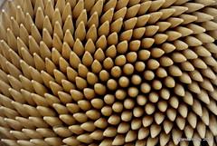 Toothpicks (Landahlauts) Tags: macro toothpick mondadientes escarbadientes palillodedientes photolanda