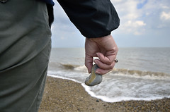 REMEMBERING THOSE DAYS OF CHILHOOD  -  (Selected by GETTY IMAGES) (DESPITE STRAIGHT LINES) Tags: she sea england woman beach water stone flesh female landscape coast nikon flickr surf waves hand stones tide norfolk shingle shoreline wave pebbles ring pebble jacket mature shore northsea trousers coastline weddingring nikkor greatyarmouth clutching sigma1020mm paulwilliams sigma1020mmlens wellingtonpier d7000 southbeachparade nikond7000 despitestraightlines ilobsterit clutcj
