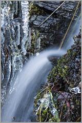 141228_Wasser_7010 (uwe_cani) Tags: wasser eifel eis eiszapfen langzeitbelichtung hohesvenn rur lzb