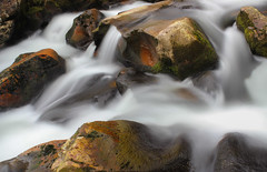 Slippery when wet (snowyturner) Tags: longexposure river moss rocks cascades algae dartmoor slippery plym