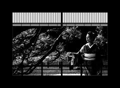 Rest of moments (karakutaia) Tags: sun tree love nature japan paper temple japanese tokyo heart superb card e simply sogno rockpaper afotando flickraward flickrglobal elementsorganizer allbeautifulshotsandmanymoreilovenature flowerstampblackandwhite transeguzkilorestreetarturbanagreatshotthisisexcellentcontestmovementricohgxrserendipitygroupbluenatureicapture flickraward5jtra realtabstract