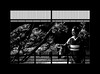 "Rest of moments (karakutaia) Tags: sun tree love nature japan paper temple japanese tokyo heart superb card e simply sogno rockpaper afotando ""flickraward"" flickrglobal elementsorganizer allbeautifulshotsandmanymoreilovenature flowerstampblackandwhite transeguzkilorestreetarturbanagreatshotthisisexcellentcontestmovementricohgxr""serendipitygroupbluenatureicapture flickraward5""j tra realtabstract"