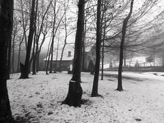 Silent snow (eriselda.lirza) Tags: trees winter blackandwhite italy white house snow casa nikon liguria hill silence neve coolpix inverno bianco silenzio s3100 piampaludo