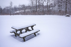 Rest my weary soul (b. ellabarger) Tags: statepark winter snow beautiful beauty forest table landscape snowy indianapolis beautifullight indiana hike serenity serene treeline isolated allalone snowscape picnictable freshsnow snowylandscape indianapolisin picnicbench beautifulearth beautyinnature beautifullandscape fortben fortharrisonstatepark beautyallaroundme restmywearysoul