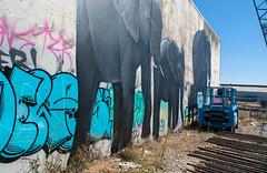 Covering the Tags (Jocey K) Tags: city newzealand christchurch sky streetart art architecture buildings mural shadows cbd elephants manchesterst spectrumstreetartfestival
