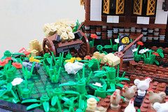 nell 1 (rwinZed) Tags: chicken lego medieval livestock