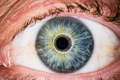 No.63 - Eye (Augmented Reality Images (Getty Contributor)) Tags: iris macro eye canon eos eyelashes skin body 11 organ vision human tired bloodshot veins 365 f8 challenge pupil ringflash eyelids efs60mm 70d