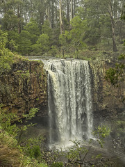 "Trentham Falls • <a style=""font-size:0.8em;"" href=""http://www.flickr.com/photos/141572193@N06/28025043344/"" target=""_blank"">View on Flickr</a>"