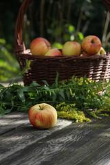 ckuchem-2064 (christine_kuchem) Tags: tisch korb deko dekoration apfelernte naturgarten herbstgarten