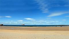 Seacliff (Senaid) Tags: scotland summer beach eastlothian seacliff bassrock panorama horses sand sky nikon d600 dubhard explored interestingness