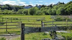 (mahler9) Tags: june fence farm provincetown capecod stable jaym 2016 mahler9