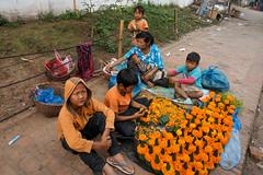 122. Laos. Dans les rues de Luang Prabang. Famille prparant des offrandes  Bouddha (beatrice.boutetdemvl) Tags: laos luang prabang femme woman enfants childs fleurs flowers offrande bouddha bouddhisme buddhism famille family