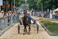 070fotograaf_20160728_058.jpg (070fotograaf, evenementen fotograaf) Tags: harnessracing racing draverij drafsport paardensport paardesport harness paardenmarkt holland netherlands nederland 070fotograaf kortebaandraverij voorschoten 2016 paarden draven kortebaan