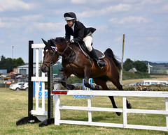 Showjumping, at Emley Show (littlestschnauzer) Tags: horse jumping fence rural countryside agricultural emley show west yorkshire uk 2016 august pursuit power lift strength nikon d7200