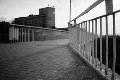 untitled (Anton Zabermach) Tags: nikonfe2 nikkor 50mmf18ai film analog 35mm bw blackandwhite ilford fp4 dof bokeh fence selfdeveloped microphen