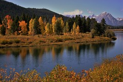 THE TETONS (The VIKINGS are Coming!) Tags: teton wyoming wilderness mountain iconicview oxbowbend deer elk moose bare