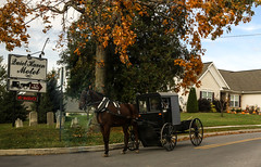 Amish Country II (Lawrence OP) Tags: pennsylvania amish dutch horse buggy