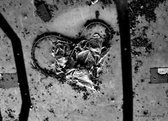 _DSC2236 (Lorenzo Luzi) Tags: allaperto blackandwhite blancoynegro noiretblanc decay abandonedplace abandoned factory lluziph bianconero light luci silhouette broken urban urbanexplorer giocodiluci ombre ombra dark