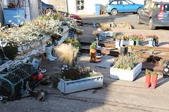 St Monans Harbour Wellie Boot Garden (Tenspeed2) Tags: st monans harbour wellie boot garden