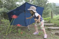 (tsuguakinara) Tags: child kid love  flower   5dmark3 eos nature canon autumn rain  nara   5d  japan  kids 5dmk3