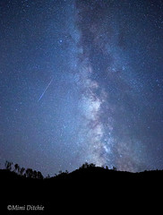 Stars And A Meteor Over See Canyon (Mimi Ditchie) Tags: milkyway seecanyon night starrynight stars meteor