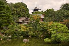 The gardens of Ninna-ji (Tim Ravenscroft) Tags: ninnaji temple garden zen buddhist pond architecture world heritage kyoto japan pagoda